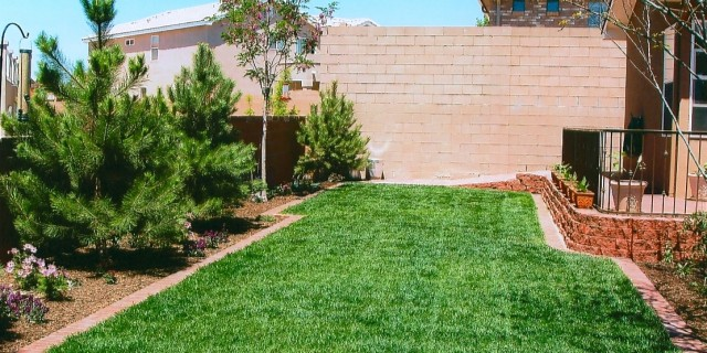 Professional Landscape Installation - Parking Lot Sweeping & Landscaping — Albuquerque, NM — Sands Outdoor